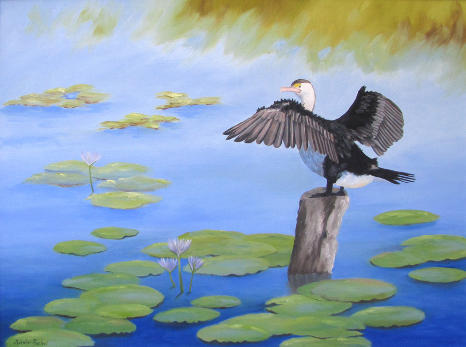 Cormorant drying out, Oil, 86x72cm, $690