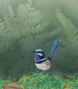 Fairy Wren, Watercolour 34x37cm, $350
