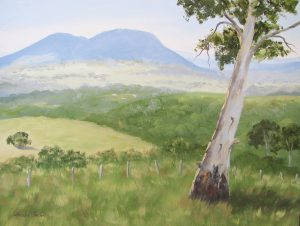 Eumundi lookout oil painting