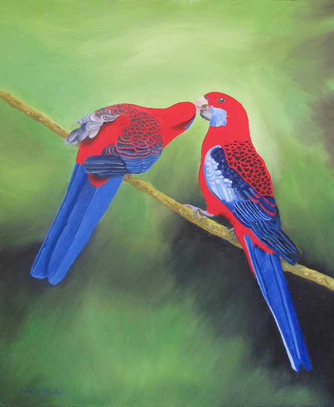 Crimson Rosellas, oil, 43x57cm, $590